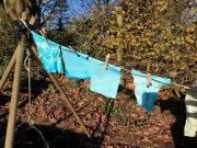 Dip Dying fabric drying in the sun