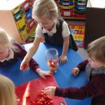 preparing fruit for smoothie
