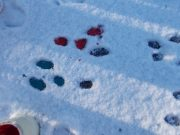 painting snow prints