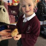 early years pupils with chicks